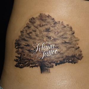 樹木の刺青作品
