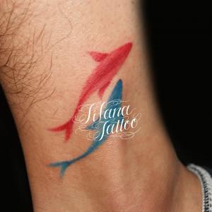 色違いのイルカのタトゥー