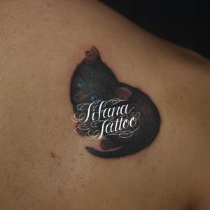 ピアスをした猫のタトゥー