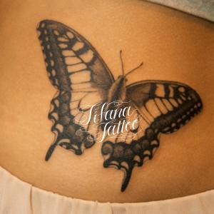 蝶の刺青作品