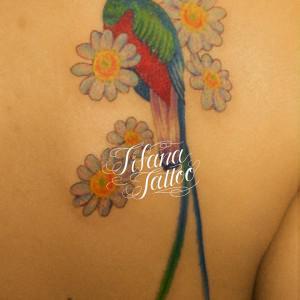 ケツァールと花のタトゥー