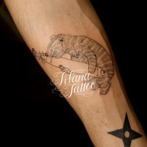 熊|鮭のタトゥー
