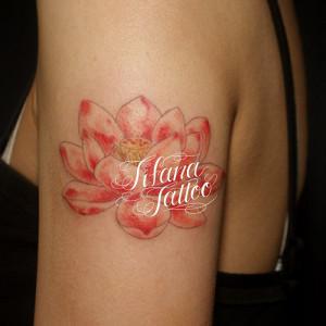 ハスの花のタトゥー