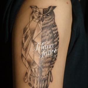 梟|フクロウのタトゥー