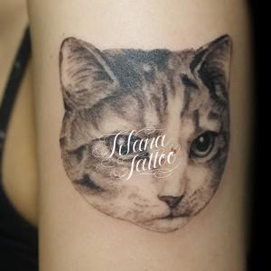 愛猫のタトゥー