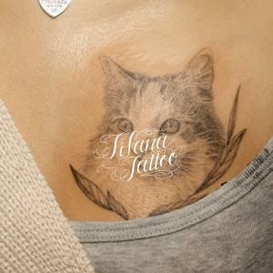 猫|ネコのタトゥー