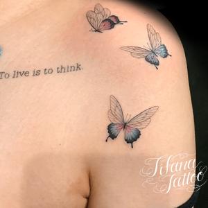 蝶のファインラインタトゥー
