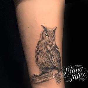 フクロウのファインライン ・タトゥー