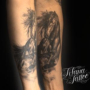 馬のファインライン タトゥー
