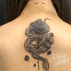蛇|薔薇のタトゥー