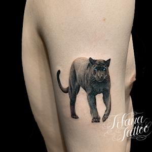 黒豹のファインライン・タトゥー