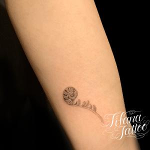 アンモナイト|化石のファインライン・タトゥー