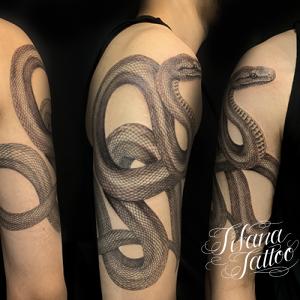 激しく畝る蛇|ヘビのタトゥー