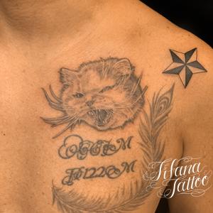 猫|星|文字|フェザーのタトゥー