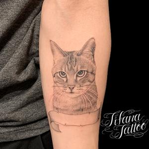 猫のポートレートタトゥー